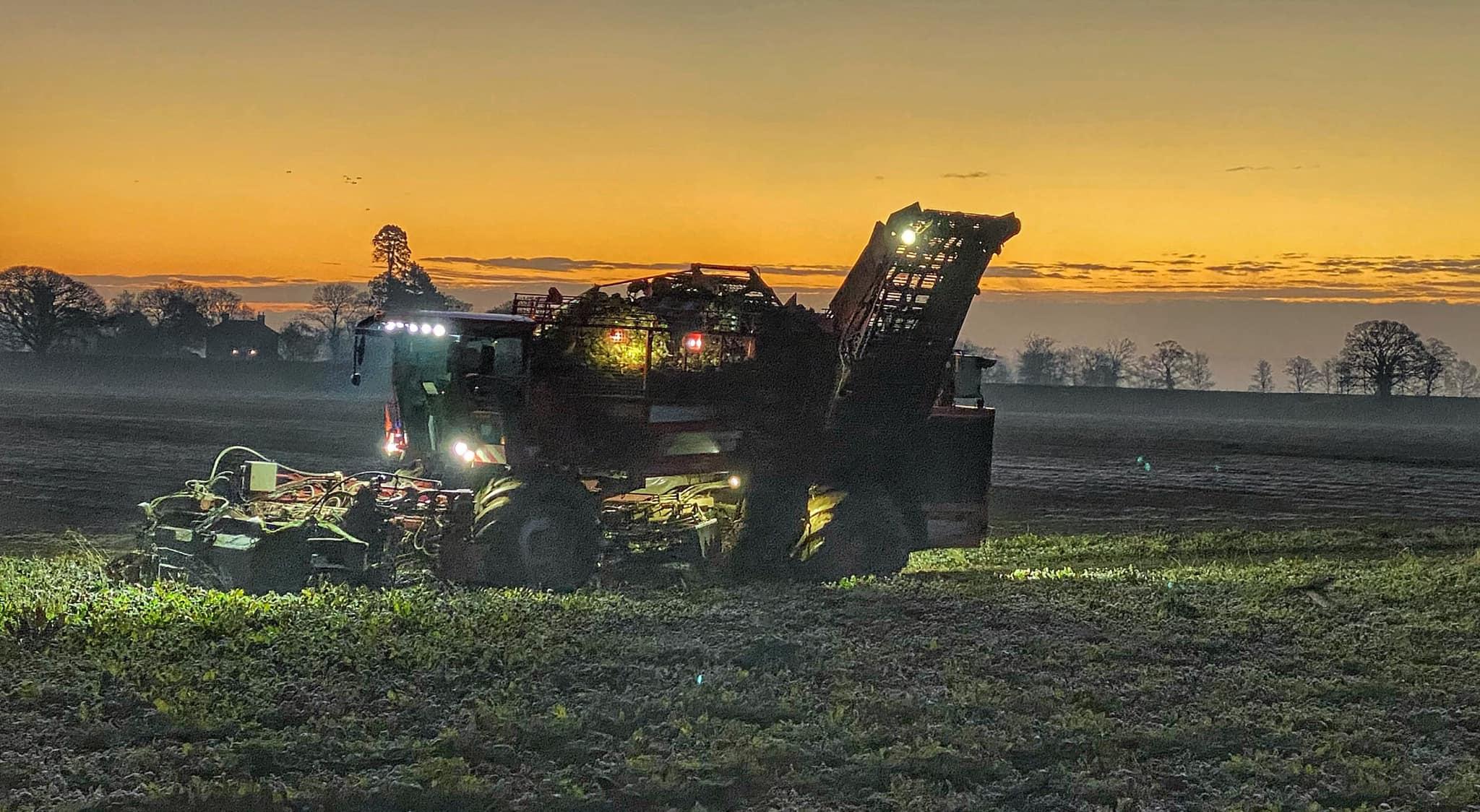 Fenland Farming